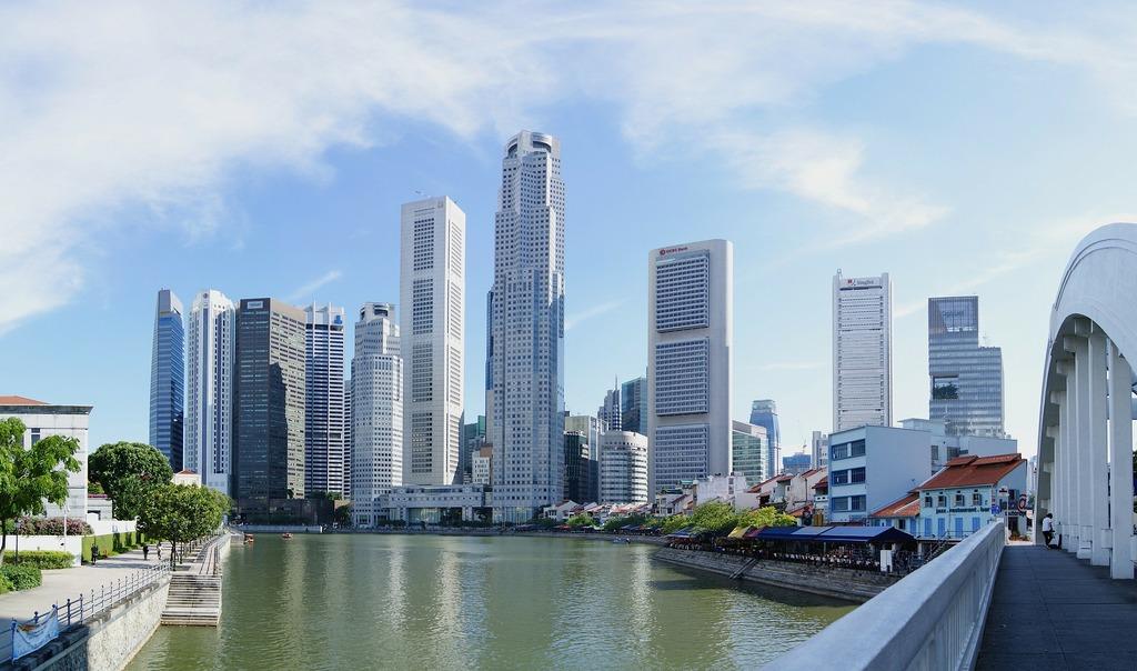 e pass singapore for singaporevisanet